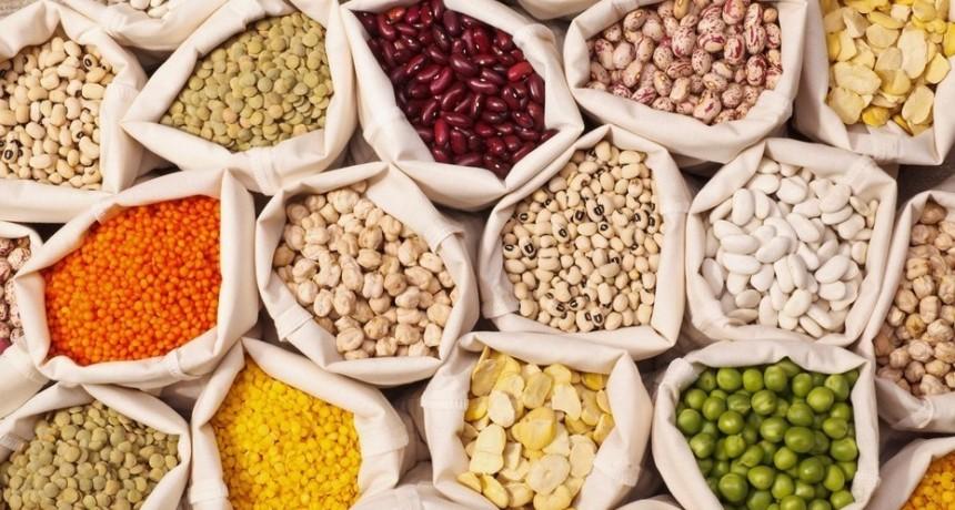 Nutrición: ¿Consumimos legumbres?