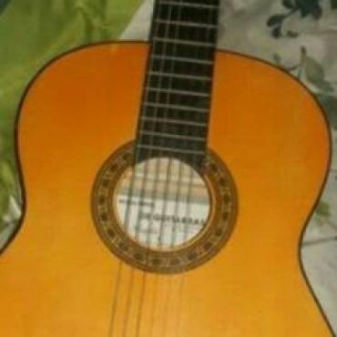 Buscan guitarra robada en barrio Lanusse