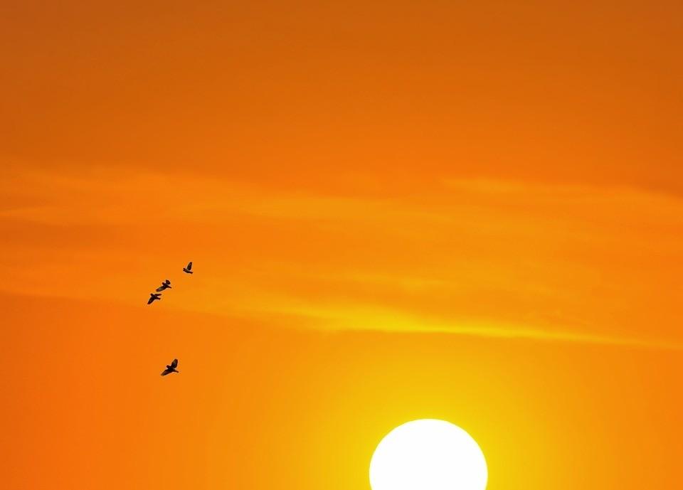 La UNLu generará electricidad con energía solar