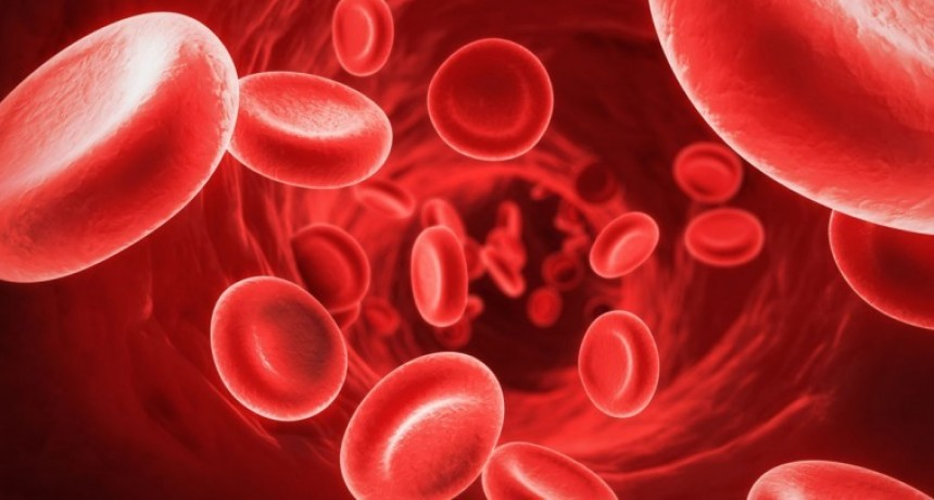 Nutrición: Anemia