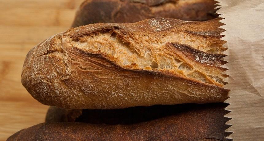 Preocupación por panaderías clandestinas