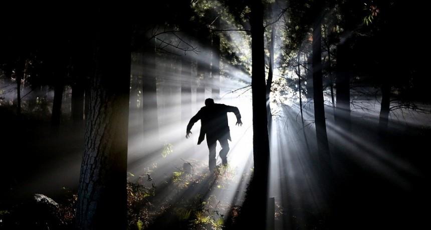 Psicología Social: Confianza vs miedo