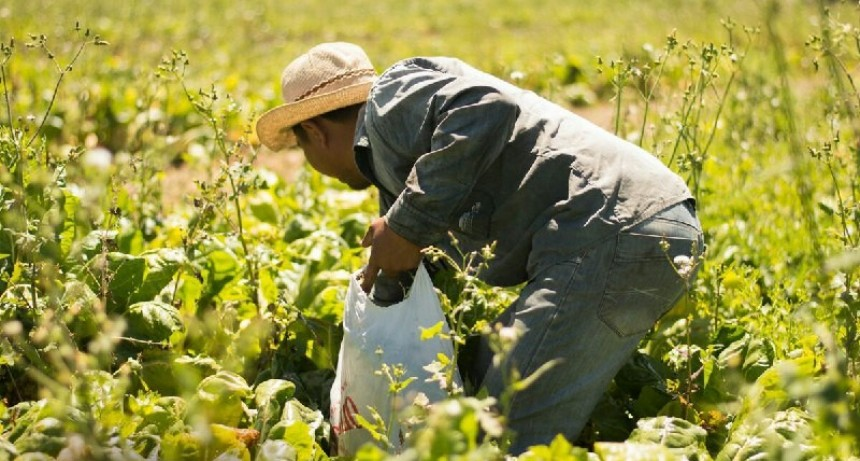 Verdurazo frente a La Rural: