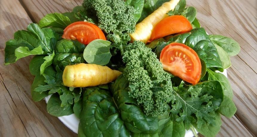 Nutrición: Alimentación Vegetariana