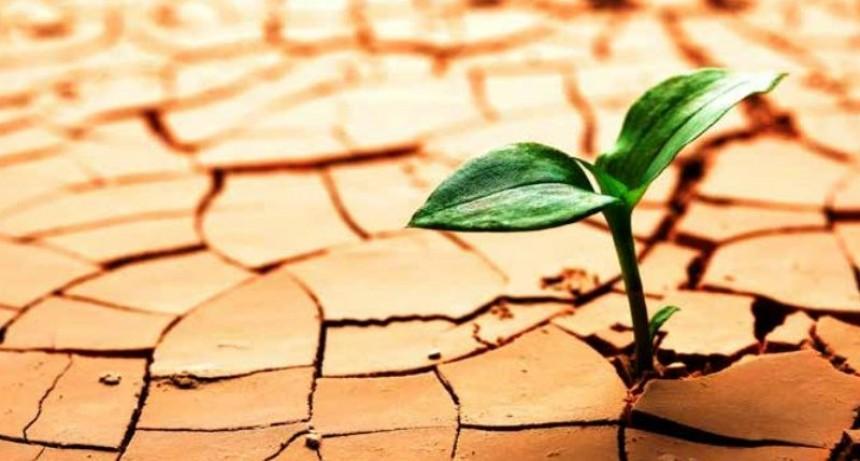 Las cinco formas de ejercitar la resiliencia