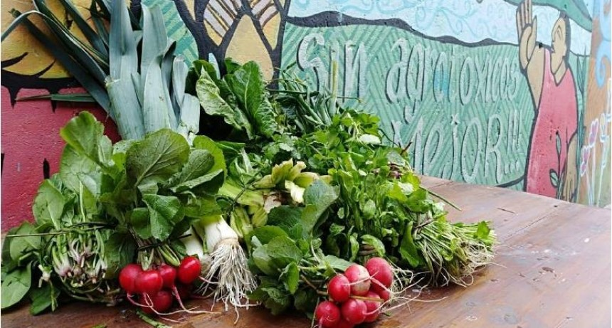El Artigas amplía oferta de verduras y frutas agroecológicas