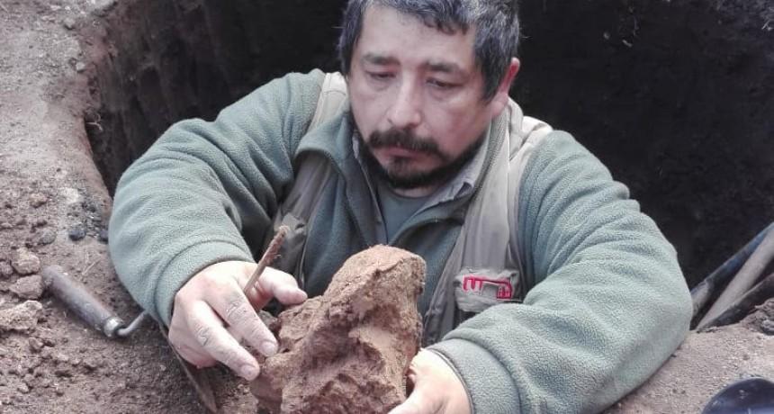 Encuentran el fémur de un perezoso de 70 mil años