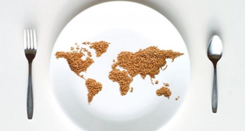 Nutrición: Alimentación sana para un mundo con hambre cero