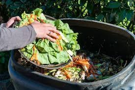 Nutrición: Pérdida y desperdicio de alimentos